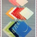 名古屋駅前カラースクールサンライト パs-なるカラー診断の色見本