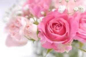 名古屋&東京 カラースクール サンライトsunlight「彩り美人アカデミー」フラワーカラー診断